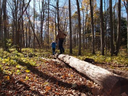 A Living Education: Homeschool Pioneers